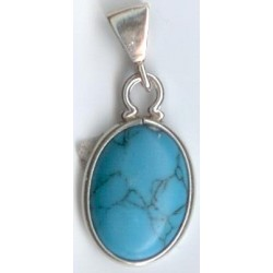 Turquoise SS Cabochon...