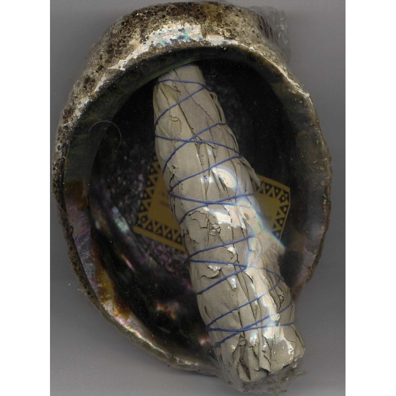 Abalone Shell and White Sage wand