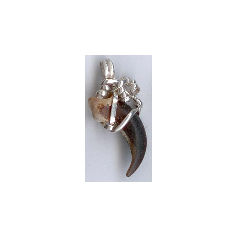 Wolf Claw Pendant