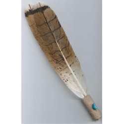 Smudge Fan Painted Redtail...
